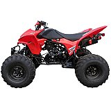 Trax 250cc ATV Sport Four Wheel Quad
