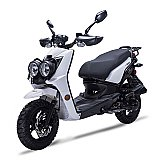 Wolf Rugby 50cc Gas Scooter Moped 49cc Street Legal 2 Year Warranty