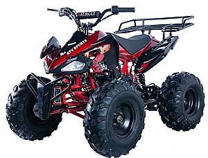 Alpine Jet 125cc Kids ATV Sport Fully-Auto Quad with Reverse 8 inch Wheel