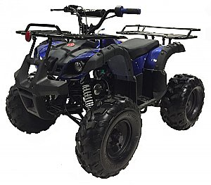 Alpine UT-125 Utility ATV QUAD YOUTH