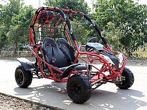 Falcon 110cc 125cc Kids Go Cart Go Kart Off Road Buggy Youth