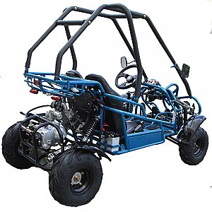 Double Trouble 125cc Go Cart Kart Off Road Youth Kids Buggy