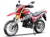 DF250RTE 250cc Enduro Street Legal Dirt Bike Dual Sport Motorcycle
