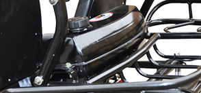 Trailmaster 150 XRS Go Cart Go Kart Dune Buggy 150cc Adult Size