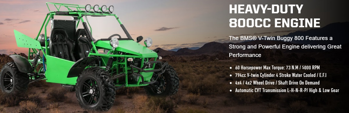 BMS V-TWIN 800cc Dune Buggy, Automatic with Reverse, 2WD/4WD