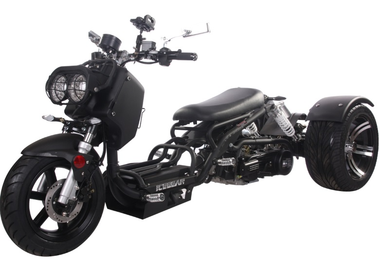 Pitbull MADDOG 150cc Motor Trike PST150-19N Scooter Trike 3