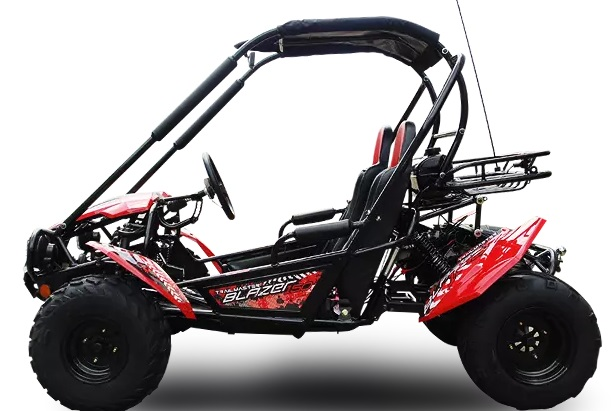 Trailmaster Blazer 2 150cc Go Cart GoKart Off Road Dune Buggy 2 Seater