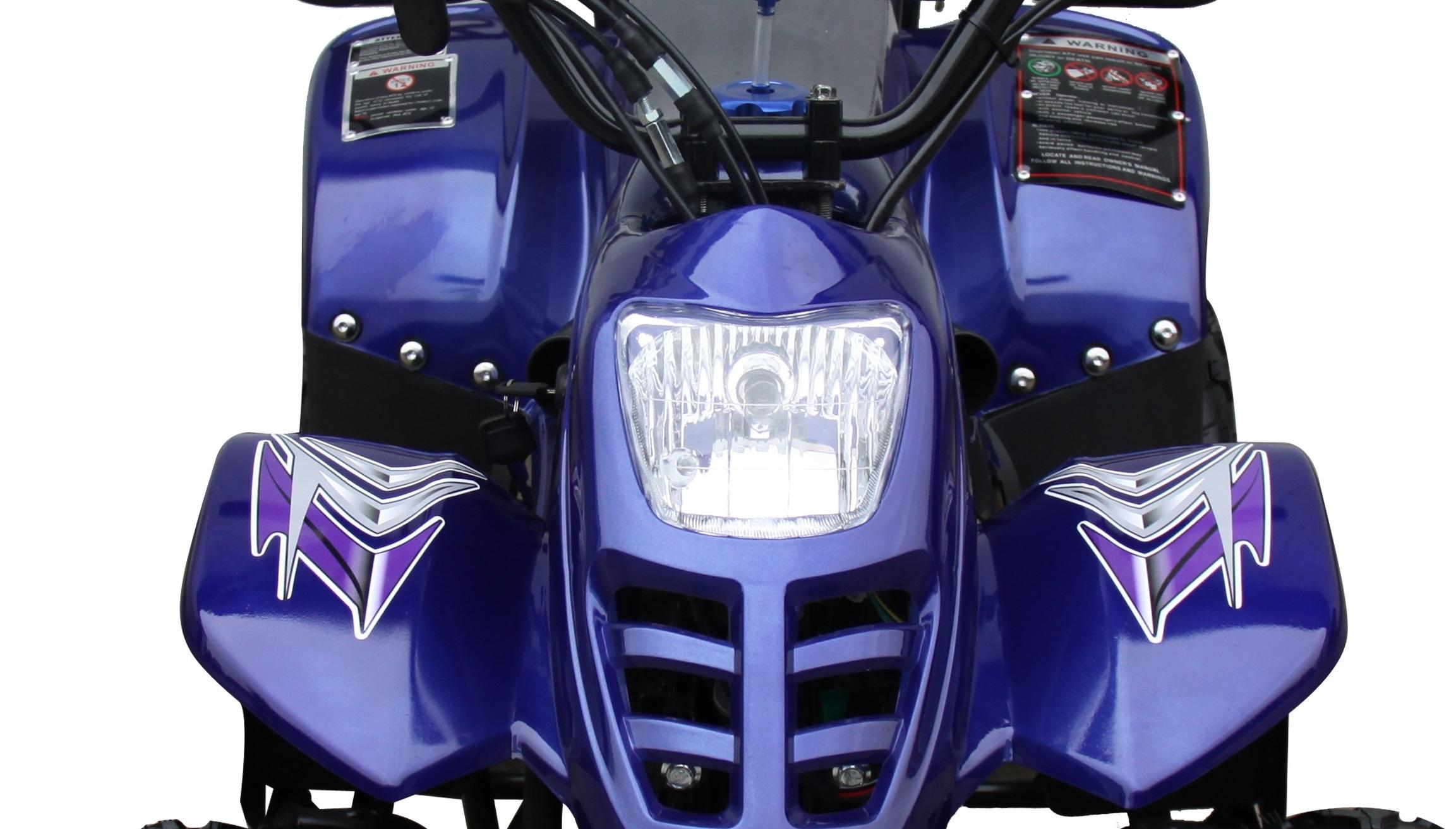 ... Panther Kids 110cc ATV Youth Quad 4 Wheeler Small Mini Size ...