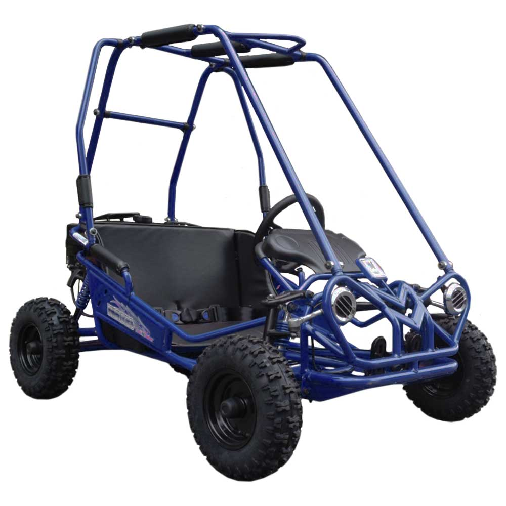 TM Trailmaster Mini XRS+ Kids Go Cart Kart Off Road Dune Buggy