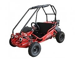 Mini Go Cart 50cc - 110cc