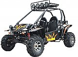 Commander 150cc Go Kart Go Cart Off-Road Large Dune Buggy Kinroad Tiking