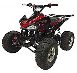 Snake Eyes 125cc Kids ATV Quad with Reverse Deluxe
