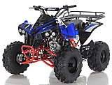 Apollo Sport Traxx 125cc Utility ATV Kids Quad