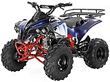 Apollo Sport Trax Kid 125cc ATV Utility Style ATV Kids Automatic