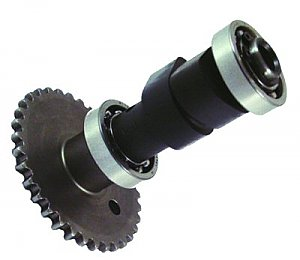 Camshaft with Bearings for 250cc 4-stroke water-cooled scooter engines