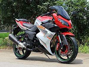 SX250R Sport Bike Motorcycle 250cc