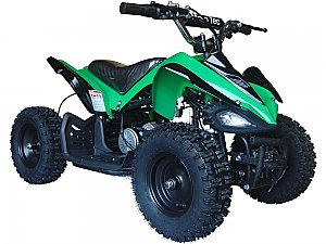 Extreme Bug 500 Watt electric atv with reverse!