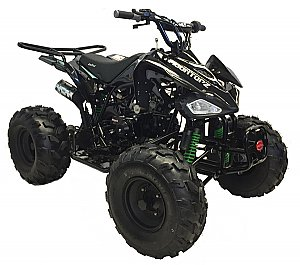 Snake Eyes 125cc Kids ATV Automatic with Reverse