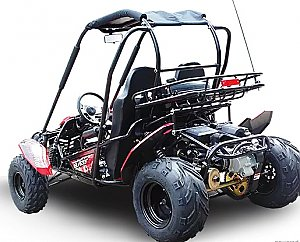 Trailmaster Blazer 150cc Go Cart GoKart Off Road Dune Buggy 2 Seater