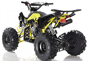 Apollo Panther 125cc Sport ATV Kids Quad 9 inch Wheel Full Size 4 Wheeler