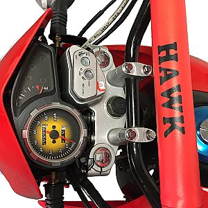 Hawk 250cc Dual Sport Enduro Motorcycle Dirt Bike Street Legal Ready