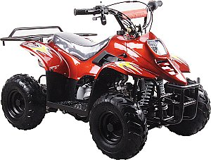 Mini ATV Plastic Body 1 Piece for Chinese Mini Quad 4 Wheeler