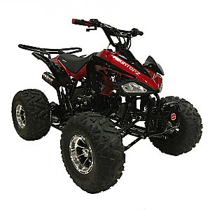 Snake Eyes 125cc Kids ATV Quad with Reverse Deluxe with Aluminum Wheels