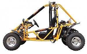 Extreme Spider 200cc 250cc Go Cart Go Kart BIG Adult Size Buggy