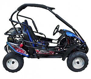TM Blazer 200R Youth Go Cart Off Road Dune Buggy with Reverse