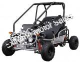 125cc Kids Go Cart Go Kart 2 Seat Mini Deluxe with Reverse