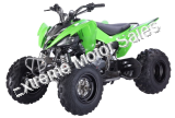 Pentora 250cc ATV Manual Transmission Off Road Quad 4 Wheeler Sport