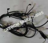 Tank Vision R3 250cc Motorcycle Main Wiring Harness