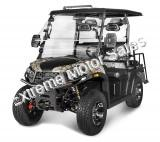 Rover 200 EFI 200cc Utility Vehicle SXS UTV Golf Cart NEV Neighborhood Vehicle