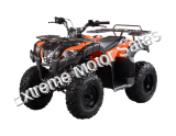 Rider 200cc ATV EFI Fuel Injected Quad 4 Wheeler Automatic Transmission
