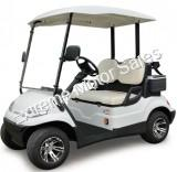 ICON i20 Electric Street Legal Golf Cart 2 Seat Neighborhood Vehicle