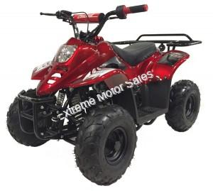 Panther Kids 110cc ATV  Youth Quad 4 Wheeler Small Mini Size