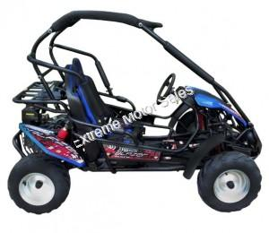 Trailmaster Blazer 200R Kids Go Cart GoKart Off Road with Reverse 196cc